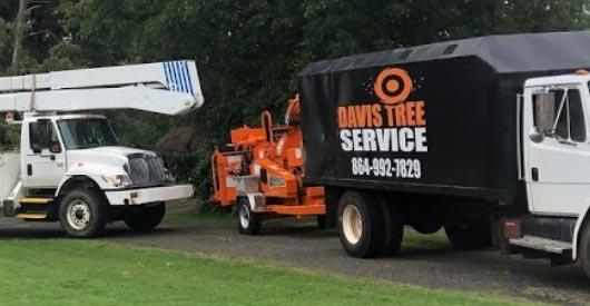 Davis Tree Service Trucks